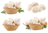 Mushrooms in wicker basket isolated on white — Stock Photo