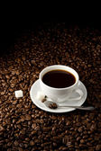 Cup full on coffee beans — Stock Photo