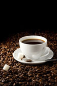 White cup of coffee and beans — Stock Photo