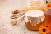 Honey, flowers and honey in glass po — Stock Photo
