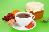 Viburnum, berry dog, tea and honey — Stock Photo