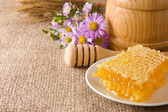 Honeycomb, flowers and honey in pot on sack — Stock Photo
