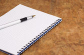 Ink pen and binder notebook — Stock Photo