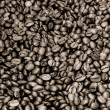 Sepia coffee beans — Foto Stock