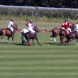 partita di polo — Foto Stock