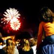 Fireworks Show — Stock Photo #10799994