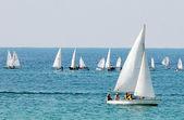 Meer-sport - segeln — Stockfoto