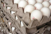 Food and Cuisine - Eggs — Foto Stock
