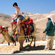 Travel Photos of Israel - Judaean Desert — Stock Photo #10852828