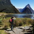 Royalty-Free Stock Photo: New Zealand Fiordland