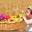 Jewish Holidays - Shavuot — Stock Photo