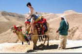 Fotos de israel - desierto de judea de viaje — Foto de Stock