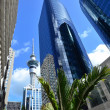 Travel Photos NZ - Auckland Cityscape — Stock Photo