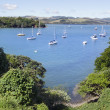 New Zealand Travel Photos - Bay of Islands - Stock Photo