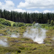 Craters of the Moon, Lake Taupo, New Zealand — Stock Photo