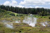 Craters of the Moon, Lake Taupo, New Zealand — Foto Stock