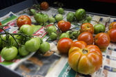 Food and Cuisine - Vegetables — Stock Photo