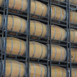 Royalty-Free Stock Photo: Barrels of Wine in a Vineyard