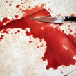 Bloody Knife — Stock Photo #11116875