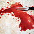 Stock Photo: Bloody Knife