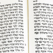Hebrew Bible — Stock Photo #11117105