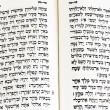 Hebrew Bible — Stock Photo #11117105