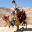 Young Girl Camel Dead Sea Israel — Stock Photo #11142630