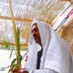 Jewish Holidays - Sukkot — Stock Photo #11144823