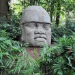 Stock Photo: Olmec colossal head
