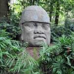 ������, ������: Olmec colossal head