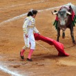 Stock Photo: MexicBull-fight