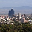 Mexico City Cityscape — Stock Photo #11179799