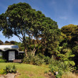 Stock Photo: New Zealand Northland