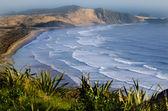 Cape reinga landschaft — Stockfoto