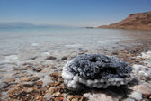 El mar muerto-israel — Foto de Stock