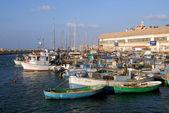 旅行照片的以色列-jaffa — 图库照片