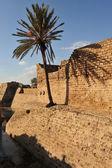 Reizen foto's van israël - caesarea — Stockfoto