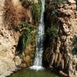 Travel Photos of Israel - Ein Gedi Spring — Stock Photo