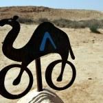 Travel Photos Israel - Negev Desert — Stock Photo #12372185