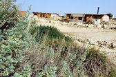 Travel Photos Israel - Negev Desert — Stock Photo