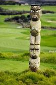 Maori carving — Stock Photo