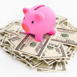 Piggy bank of dollar stack — Stock Photo