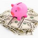 Piggy bank of dollar stack — Stock Photo