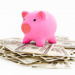 Piggy bank on dollar stack — Stock Photo