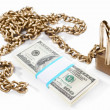 Money and security concept — Stock Photo