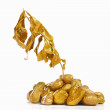 Stock Photo: Dry golden plant on gold rock