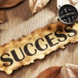 Stock Photo: Guidance to success concept