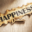 Stock Photo: Key to happiness concept