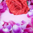 Rose petals surrounded small pink paper — Foto de Stock