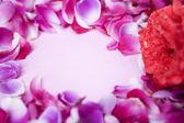 Copy space between rose petal — Stock Photo